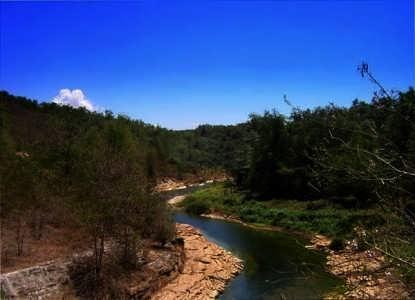 Wanagama Berawal dari Lahan Kritis Berakhir Jadi Hutan Wisata