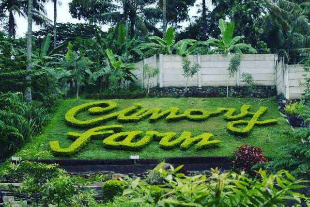 Cimory on the Valley, Restaurant, and Milk Factory